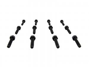 M3 x 10mm Bolt - Black Nylon 6/6 - (set of 12)