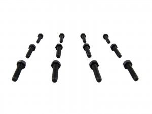 M3 x 10mm Bolt - Black Nylon 6/6 - (set of 12)