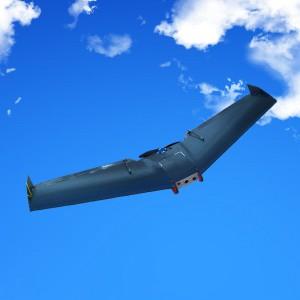 ZII Zephyr 2 Wing